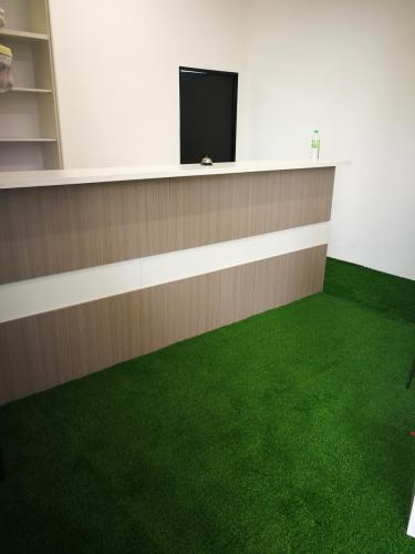 Artificial Grass and Counter Top